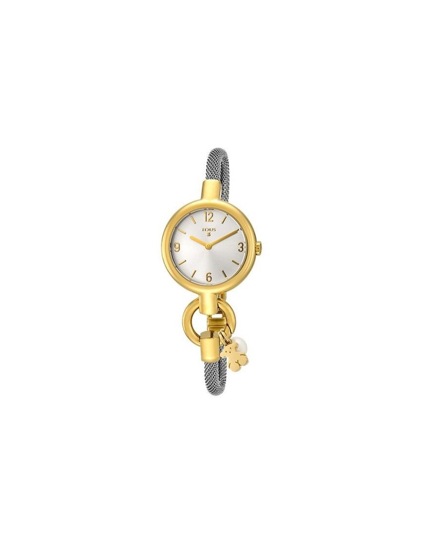 800350860 - HOLD CHARMS SS/IPG ESF SILVER ESTERILLA
